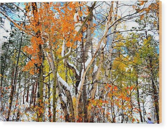 Black Hills Entanglement Wood Print