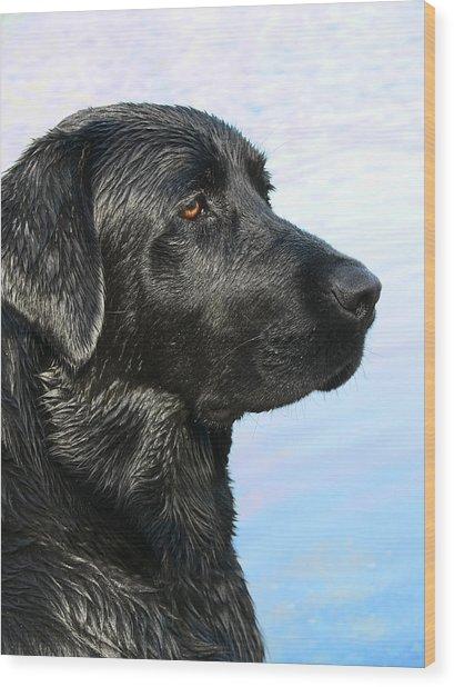 Black Labrador Retriever After The Swim Wood Print