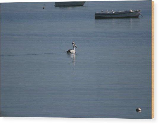 Black Line Pelican  Calm Water Wood Print