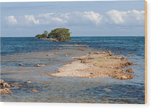 Black Point Marina - Cutler Bay Wood Print