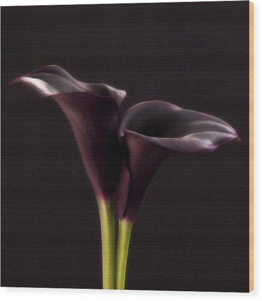 Black And White Purple Flowers Art Work Photography Wood Print