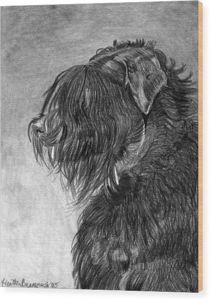 Black Russian Terrier Dog Portrait  Wood Print by Olde Time  Mercantile