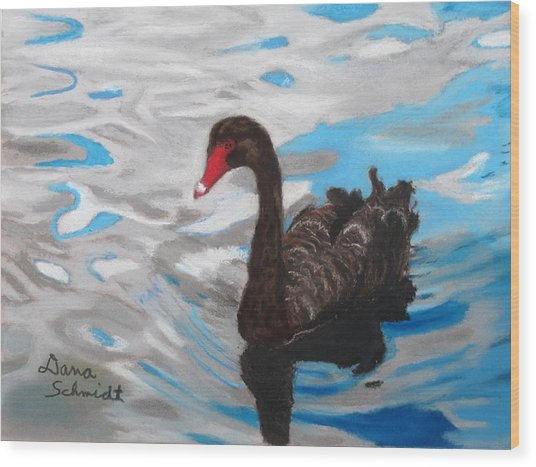 Black Swan Swimming Lake Eola Wood Print