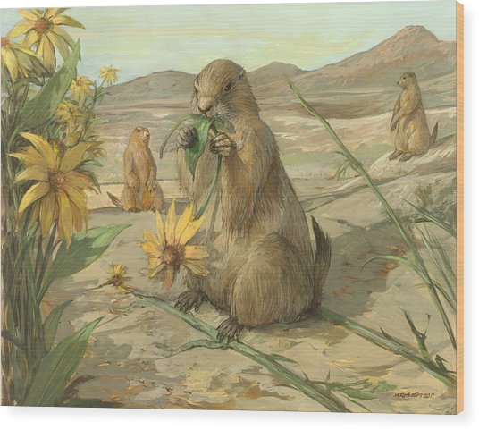 Black-tailed Prairie Dogs Wood Print by ACE Coinage painting by Michael Rothman