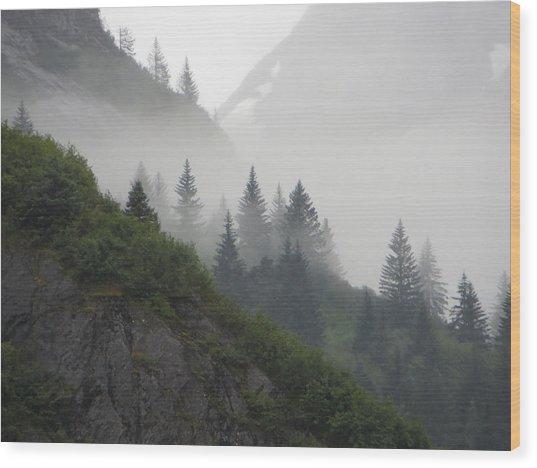 Blanket Of Fog Wood Print