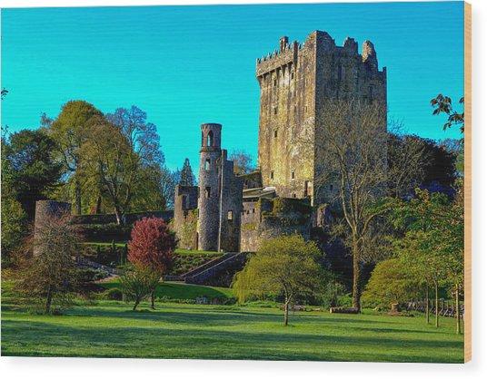 Blarney Castle - Ireland Wood Print