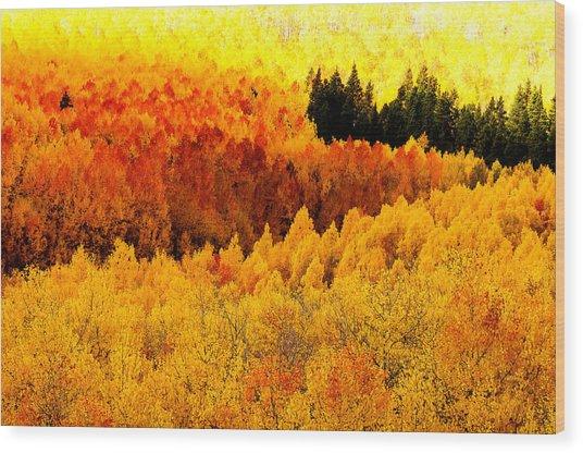 Blazing Mountainside Wood Print