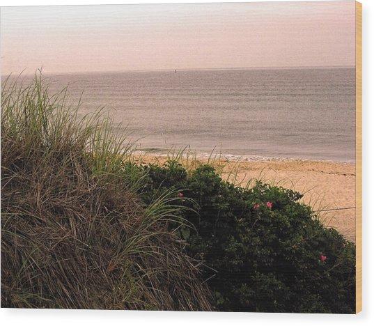 Block Island Beach Wood Print