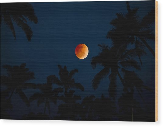 Blood Moon In The Tropics Wood Print