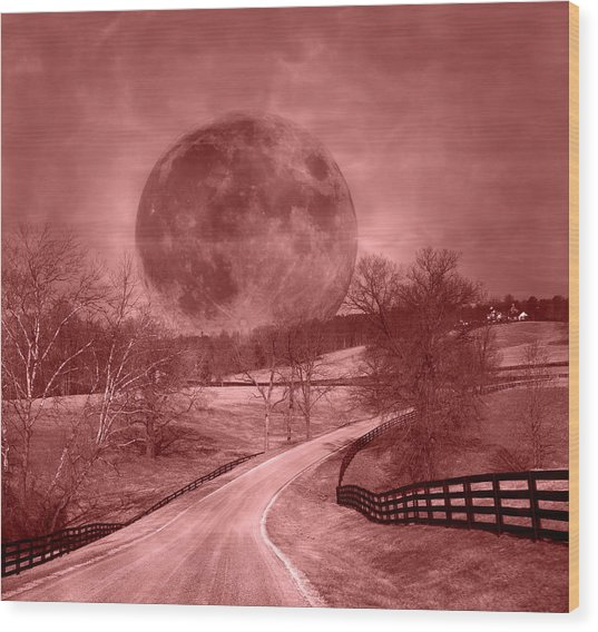 Blood Moon One Of Two Wood Print