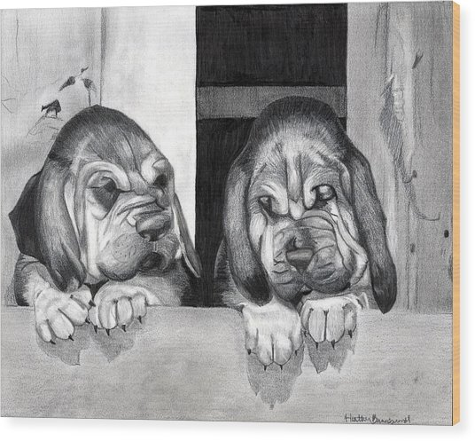 Bloodhound Puppies Dog Portrait  Wood Print by Olde Time  Mercantile