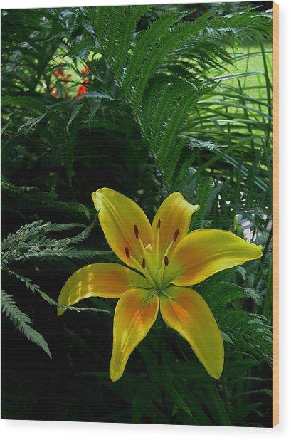 Bloomin Wonder Wood Print by Larry Jones