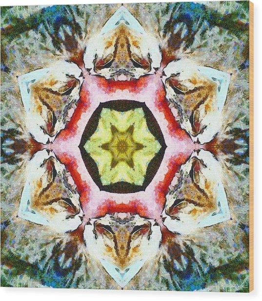 Wood Print featuring the photograph Blooming Fibonacci by Derek Gedney