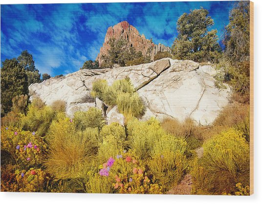 Blooming Nevada Desert Near Ely Wood Print