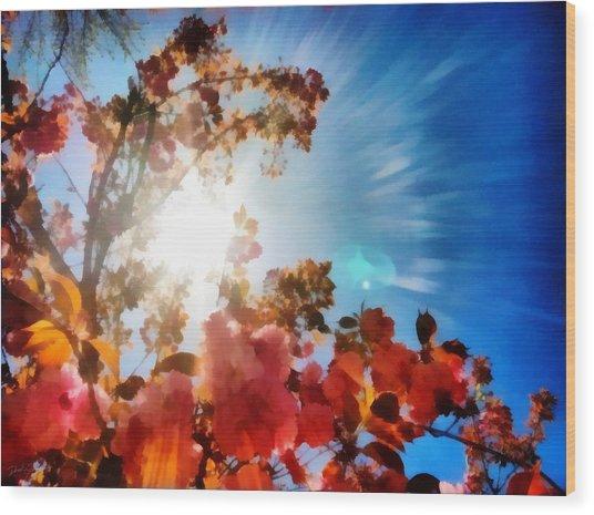 Blooming Sunlight Wood Print