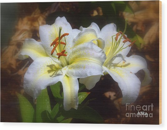 Bloom'n Lilies Wood Print