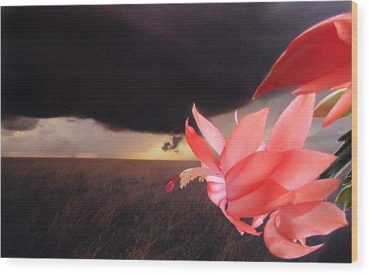 Blooms Against Tornado Wood Print