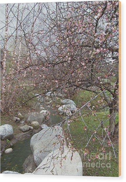 Blossom Brook Wood Print