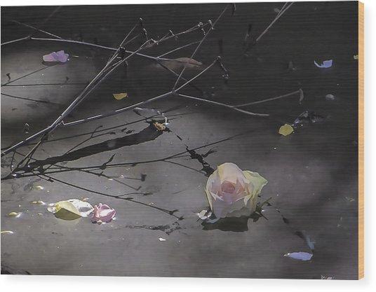 Blossom Rain 17 Wood Print by Georg Kickinger