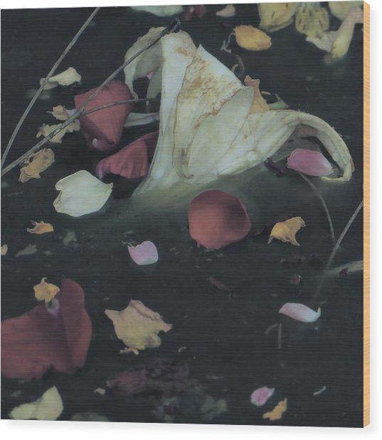 Blossom Rain 32 Wood Print by Georg Kickinger