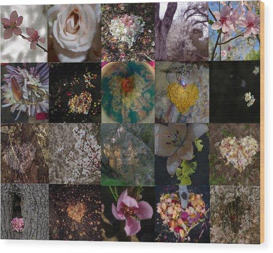 Blossom Rain I Wood Print by Georg Kickinger