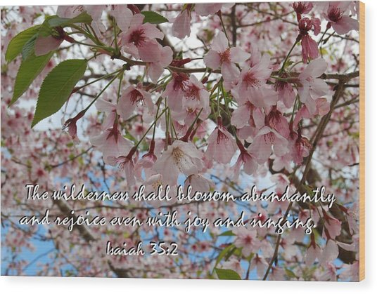 Blossoms Rejoice Wood Print