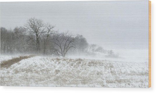 Blowing Snow Over Fields And Forest Wood Print