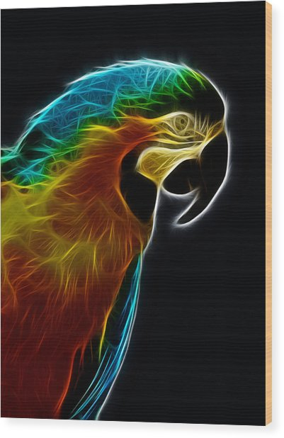 Blue And Gold Macaw Frac Wood Print