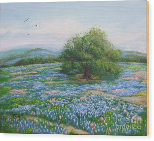 Blue Bonnet Field Wood Print