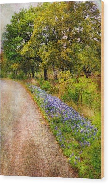 Blue Bonnet Path Wood Print