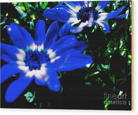 Blue Daze Wood Print
