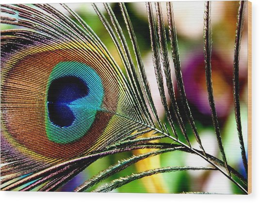 Blue Eye Wood Print