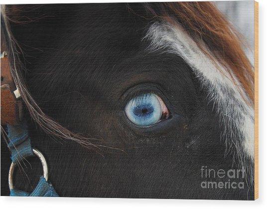 Blue Eyed Horse Wood Print