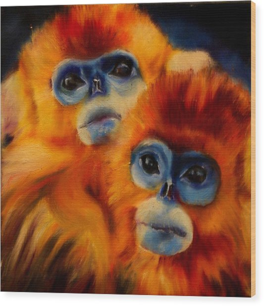 Blue Faced Monkey Wood Print