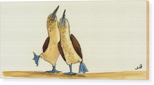 Blue Footed Boobies Wood Print