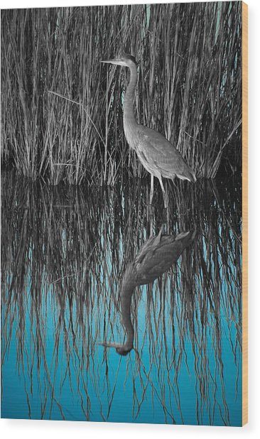 Wood Print featuring the photograph Blue by Francis Trudeau
