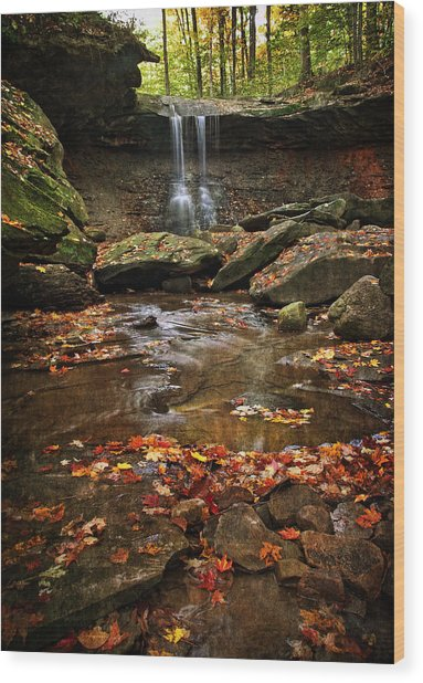 Blue Hen Falls In Autumn Wood Print