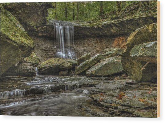 Blue Hen Falls Wood Print