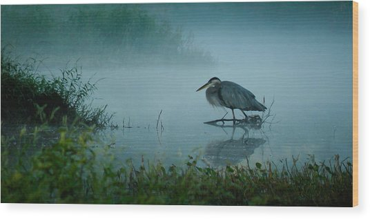 Blue Heron Morning Wood Print
