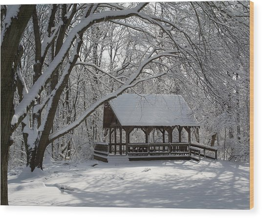 Blue Heron Park In Winter Wood Print