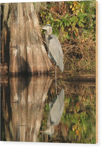 Blue Heron Reflection Wood Print by Jeff Wright