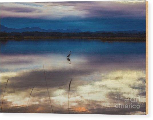 Blue Heron Sun Set Wood Print
