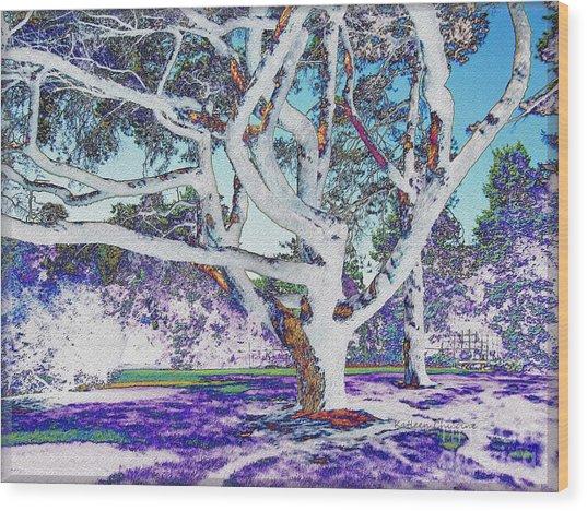 Blue Ice Wood Print