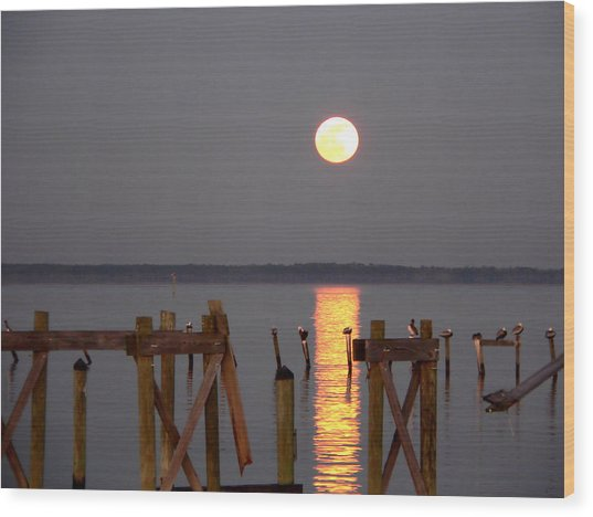 Blue Moon On The Bay On New Years Eve 2009 Wood Print