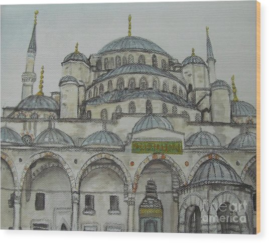 Blue Mosque Istanbul Turkey Wood Print