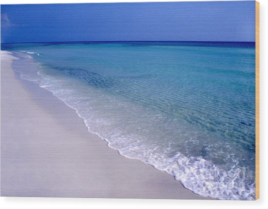 Blue Mountain Beach Wood Print