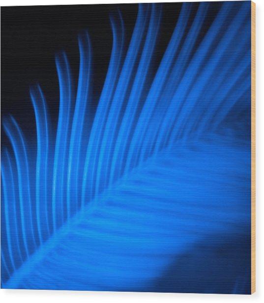 Blue Palm Wood Print