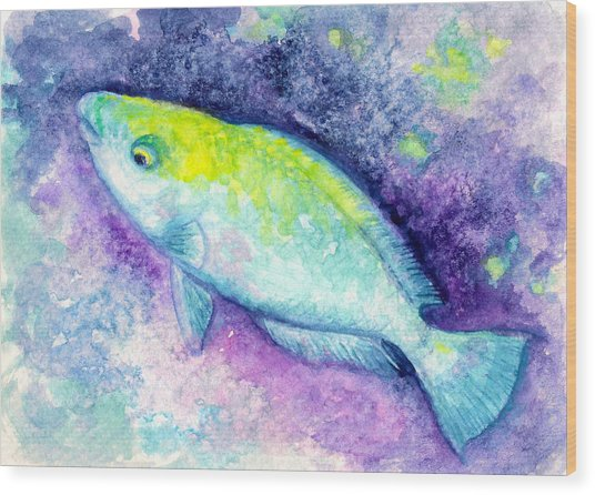 Blue Parrotfish Wood Print