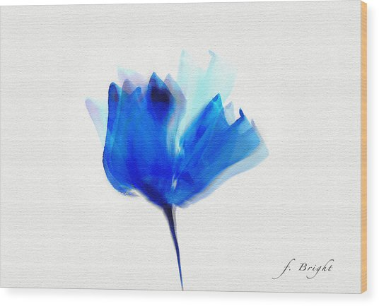 Blue Poppy Silouette Mixed Media  Wood Print