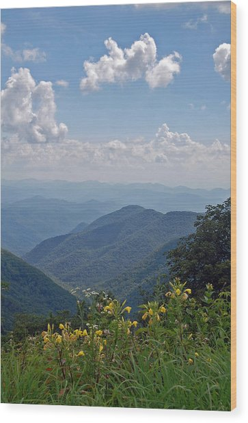Blue Ridge Blossoms Wood Print by Mary Anne Baker